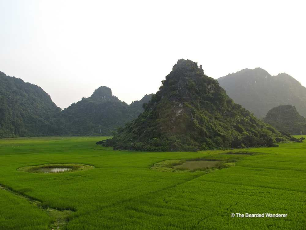 A limestone karst rises out of the paddy fields near Phong Nha National Park. (Will Jackson)